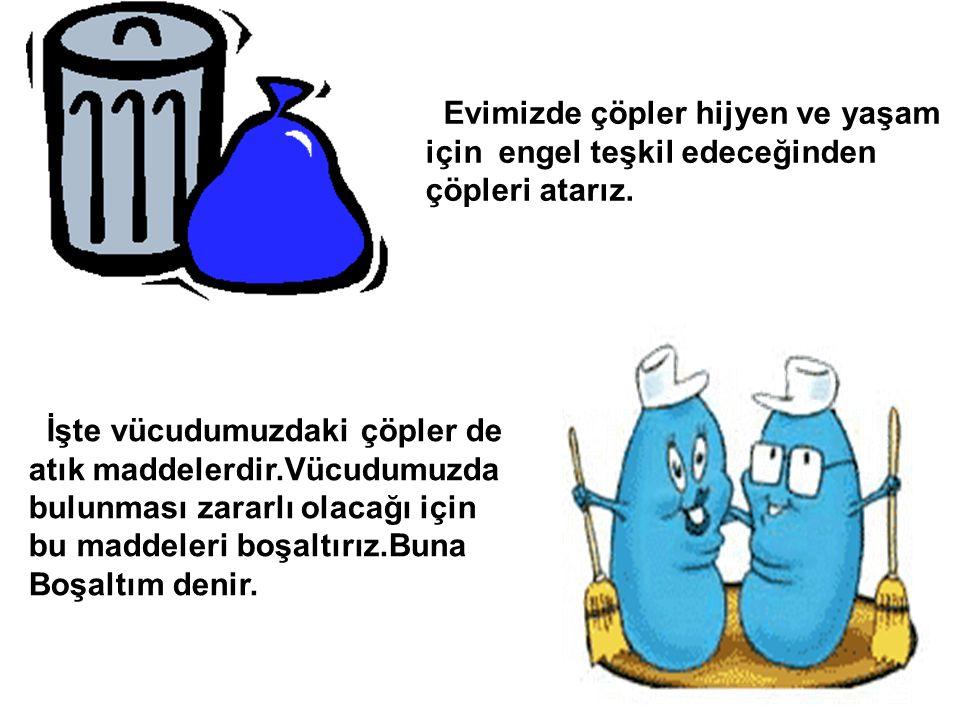 Evimizde çöpler hijyen ve yaşam için engel teşkil edeceğinden çöpleri atarız.