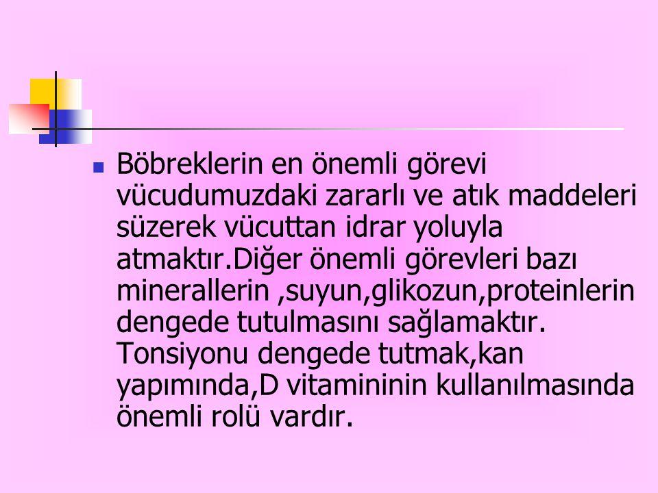  Kronik böbrek hastalığı böbreğin tamamen veya %80 fonksiyonunu kaybetmesi ve görevini yerine getirememesi demektir.  Türkiye'de birçok sayıda kroni
