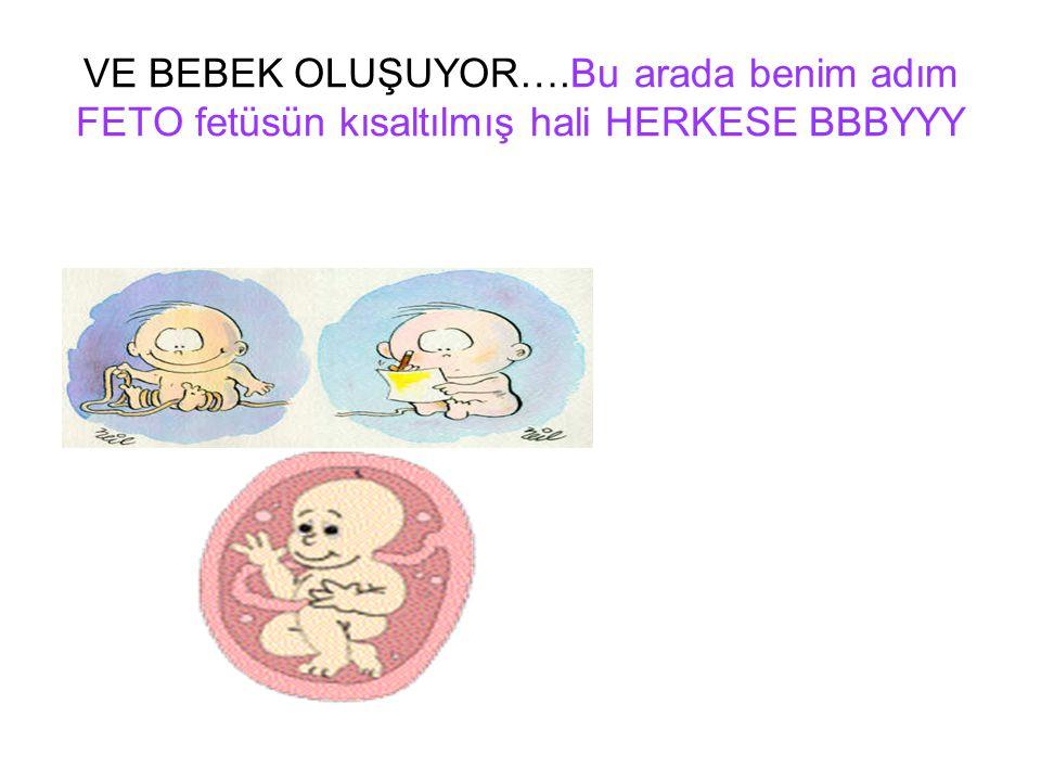 VE BEBEK OLUŞUYOR….Bu arada benim adım FETO fetüsün kısaltılmış hali HERKESE BBBYYY