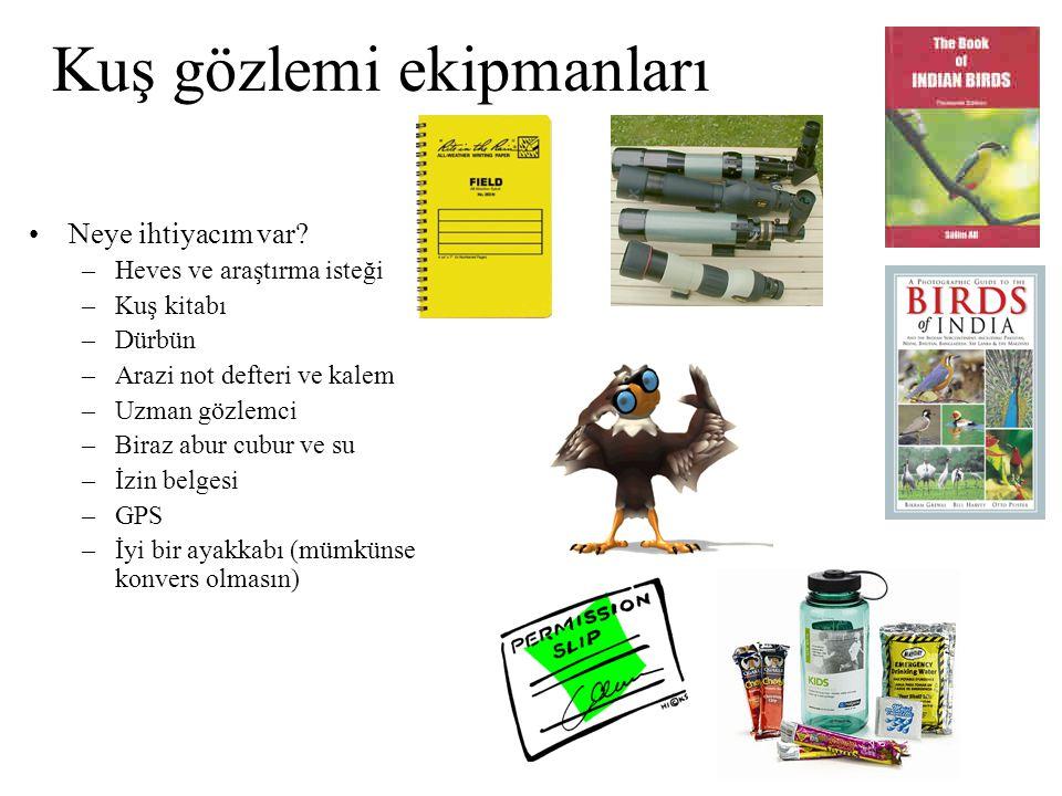 Kuş gözlemi ekipmanları •Neye ihtiyacım var? –Heves ve araştırma isteği –Kuş kitabı –Dürbün –Arazi not defteri ve kalem –Uzman gözlemci –Biraz abur cu