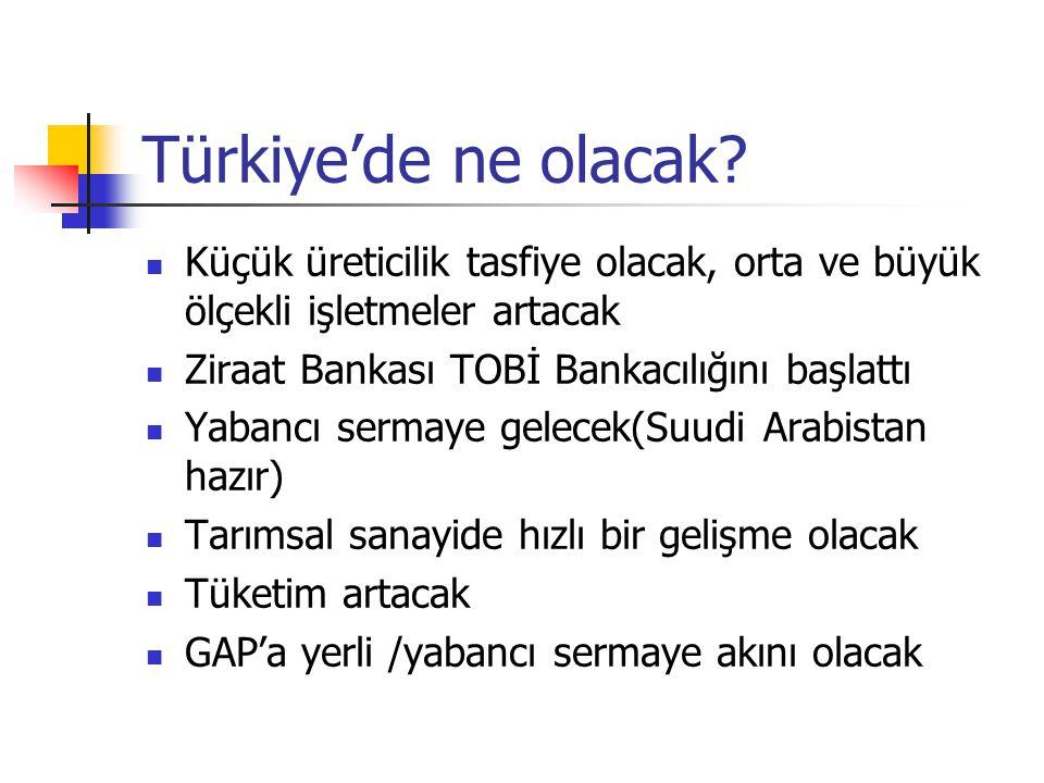 Türkiye'de ne olacak?  Küçük üreticilik tasfiye olacak, orta ve büyük ölçekli işletmeler artacak  Ziraat Bankası TOBİ Bankacılığını başlattı  Yaban