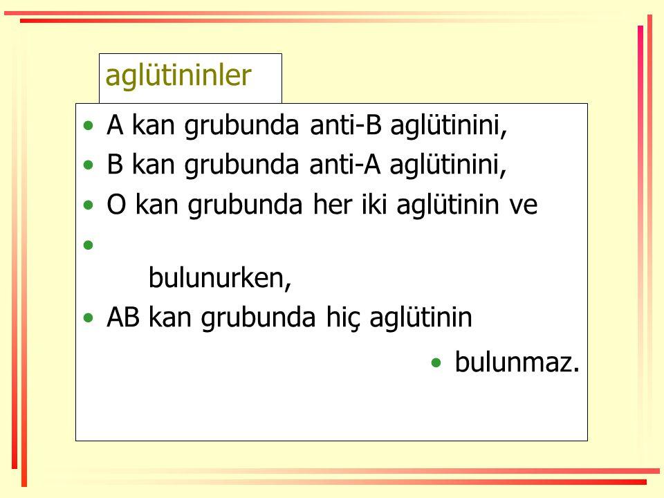 aglütininler •A kan grubunda anti-B aglütinini, •B kan grubunda anti-A aglütinini, •O kan grubunda her iki aglütinin ve • bulunurken, •AB kan grubunda hiç aglütinin •bulunmaz.