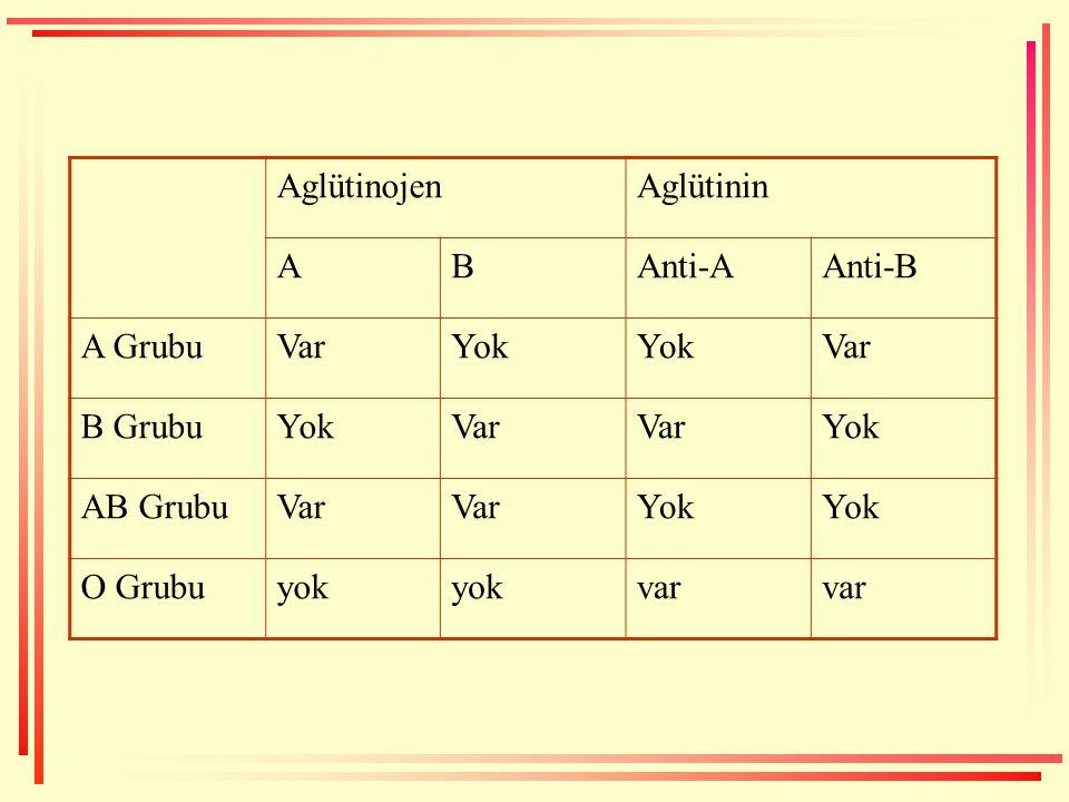 AglütinojenAglütinin ABAnti-AAnti-B A GrubuVarYok Var B GrubuYokVar Yok AB GrubuVar Yok O Grubuyok var