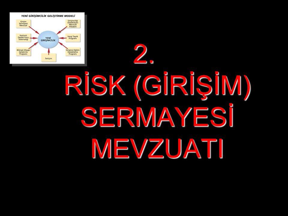 Prof.Dr. Arman Kırım, 201034 2. RİSK (GİRİŞİM) SERMAYESİ MEVZUATI