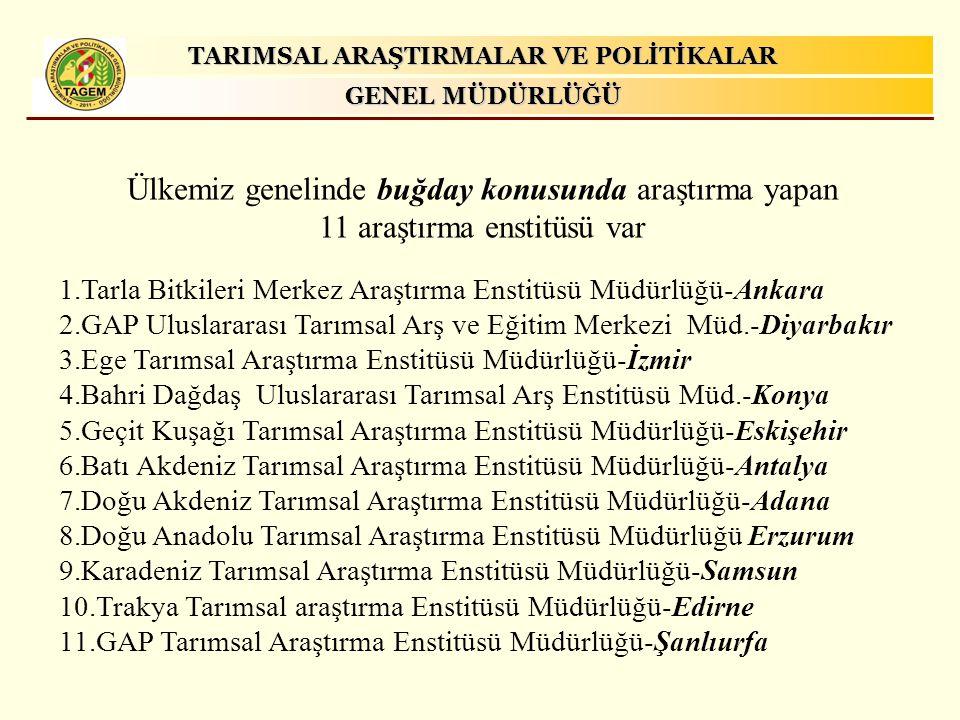 Ülkemiz genelinde buğday konusunda araştırma yapan 11 araştırma enstitüsü var 1.Tarla Bitkileri Merkez Araştırma Enstitüsü Müdürlüğü-Ankara 2.GAP Ulus