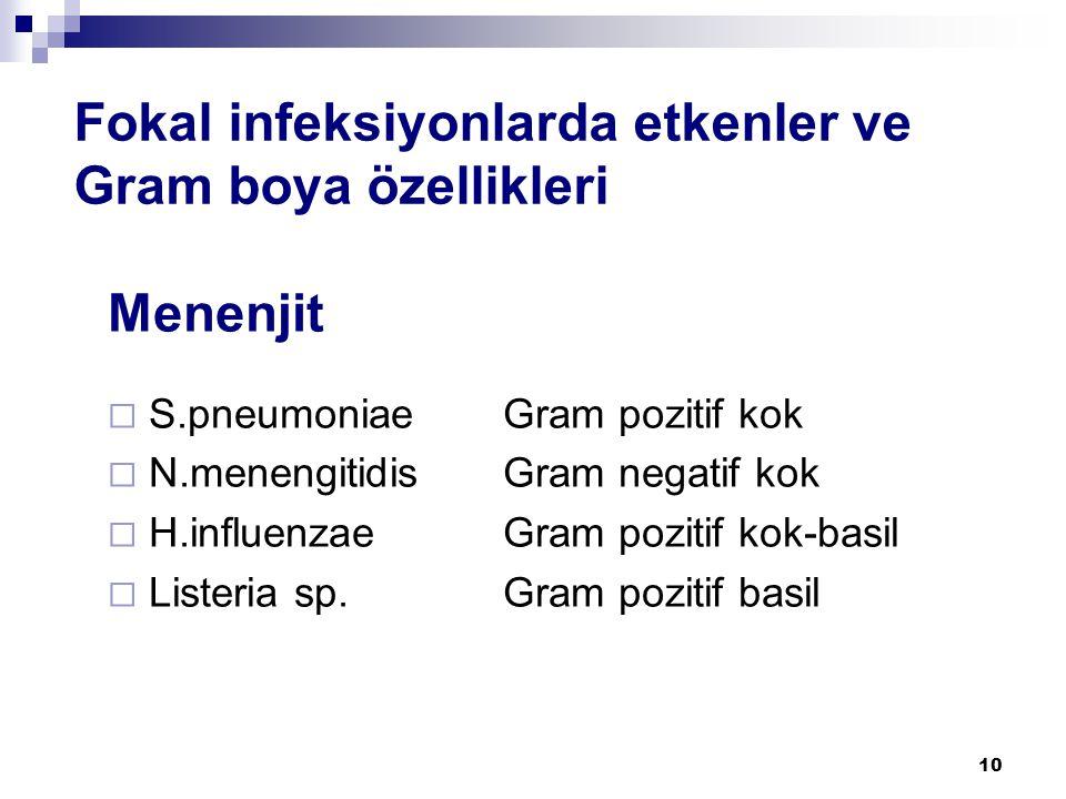 10 Fokal infeksiyonlarda etkenler ve Gram boya özellikleri Menenjit  S.pneumoniae Gram pozitif kok  N.menengitidis Gram negatif kok  H.influenzae G