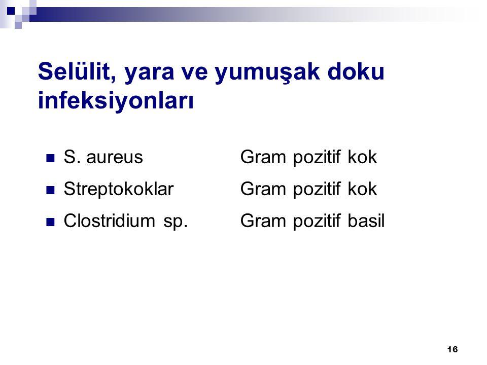 16 Selülit, yara ve yumuşak doku infeksiyonları  S. aureusGram pozitif kok  StreptokoklarGram pozitif kok  Clostridium sp.Gram pozitif basil