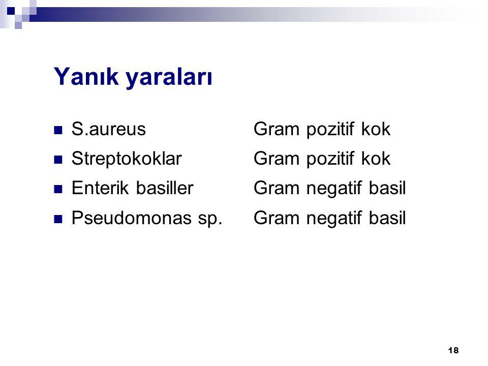 18 Yanık yaraları  S.aureus Gram pozitif kok  Streptokoklar Gram pozitif kok  Enterik basiller Gram negatif basil  Pseudomonas sp. Gram negatif ba
