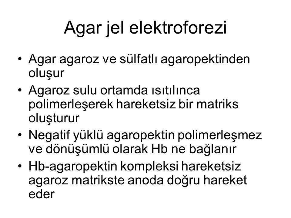 Agar jel elektroforezi •Agar agaroz ve sülfatlı agaropektinden oluşur •Agaroz sulu ortamda ısıtılınca polimerleşerek hareketsiz bir matriks oluşturur