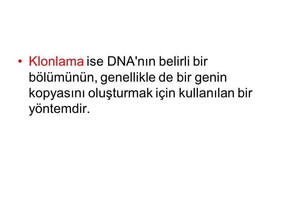 •Klonlama ise DNA'nın belirli bir bölümünün, genellikle de bir genin kopyasını oluşturmak için kullanılan bir yöntemdir.