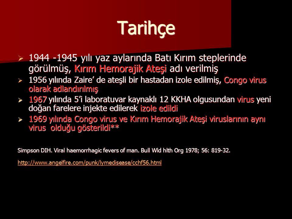 Tarihçe  1944 -1945 yılı yaz aylarında Batı Kırım steplerinde görülmüş, Kırım Hemorajik Ateşi adı verilmiş  1956 yılında Zaire' de ateşli bir hastad
