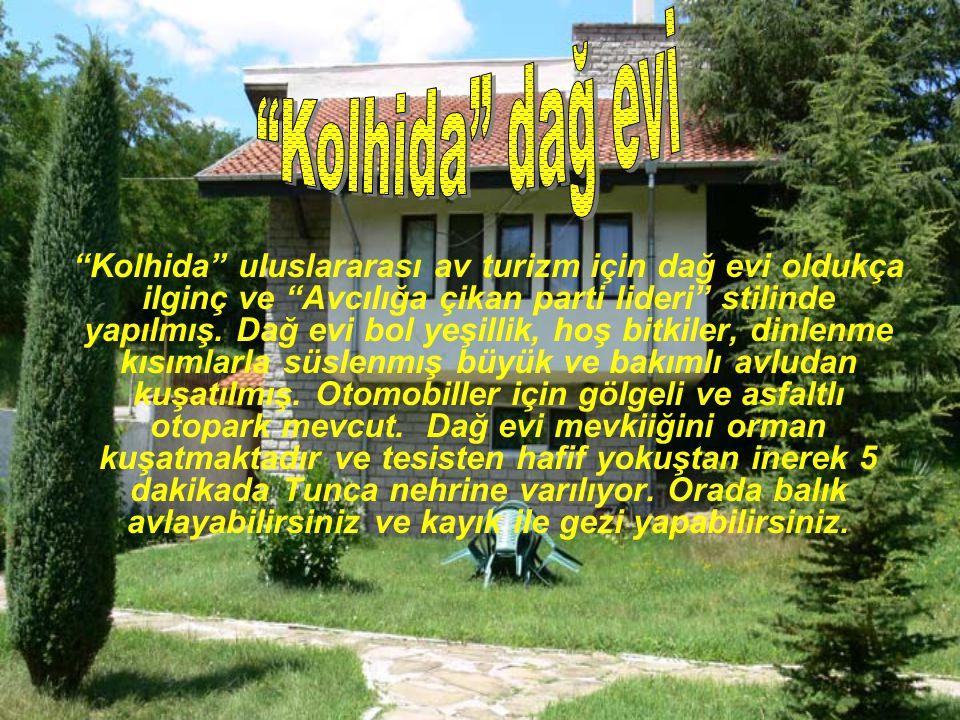 """""""Kolhida"""" uluslararası av turizm için dağ evi oldukça ilginç ve """"Avcılığa çikan parti lideri"""" stilinde yapılmış. Dağ evi bol yeşillik, hoş bitkiler, d"""