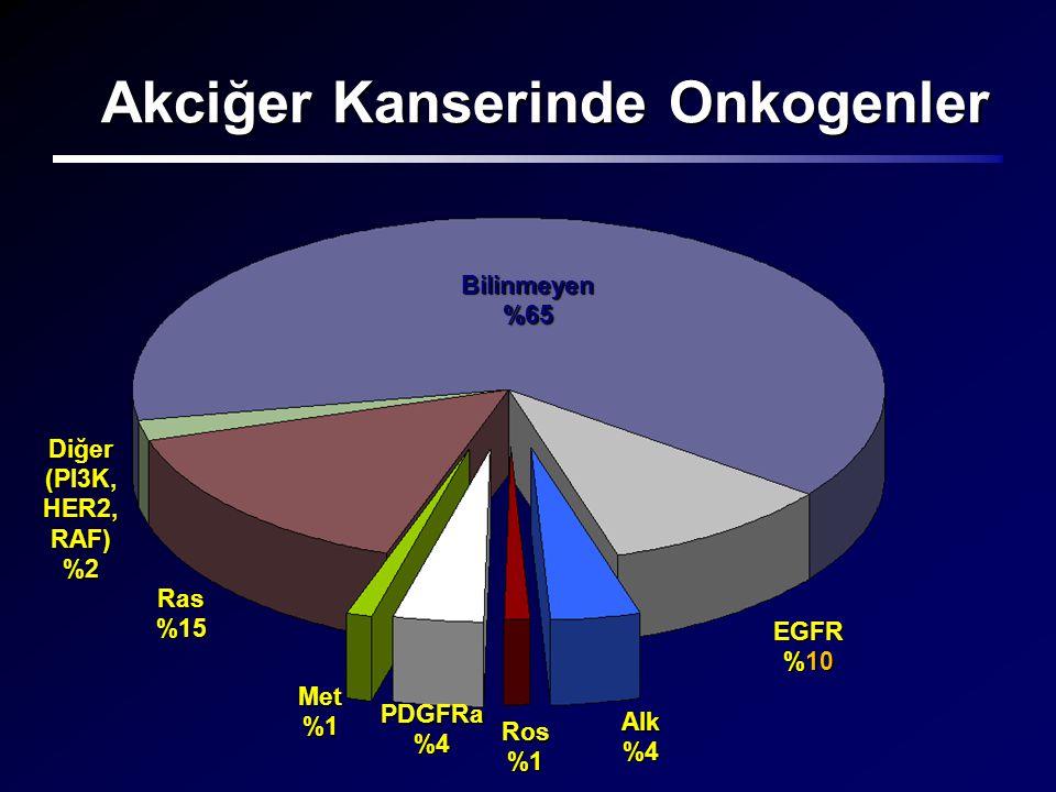 Akciğer Kanserinde Onkogenler Bilinmeyen %65 Ras %15 Diğer (PI3K, HER2, RAF) %2 Met %1 PDGFRa %4 Ros %1 Alk %4 EGFR %10