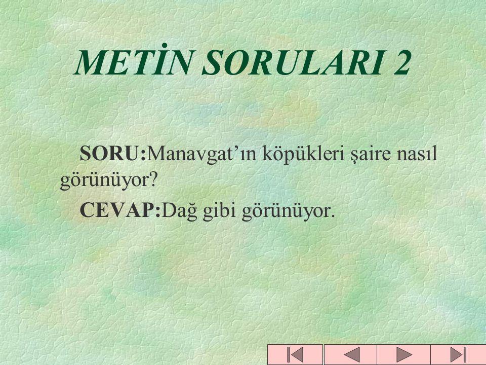 METİN SORULARI 1 SORU:Şiirde Erzincan hangi özelliği ile anılmıştır? CEVAP:Volkanik faaliyetlerin görüldüğü belirtilmiştir. SORU:Isparta hangi özelliğ