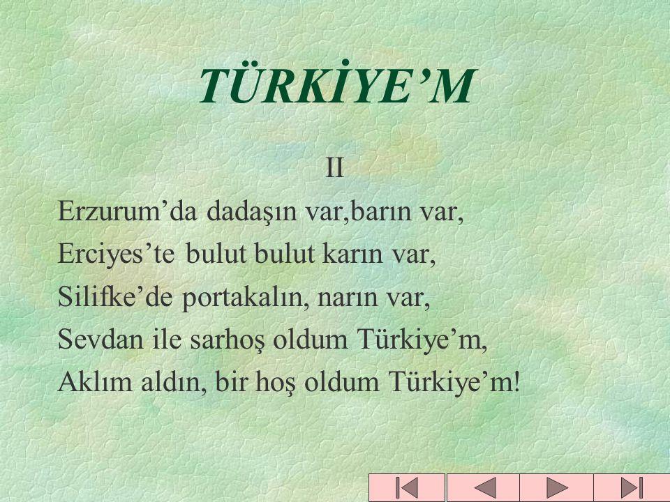 TÜRKİYE'M 1 Edirne'de bayrak bayrak çalkandım. Ardahan'da göğüslerde kalkandım. Erzincan'da yanardağdım, volkandım. Sevdan ile sarhoş oldum Türkiye'm,