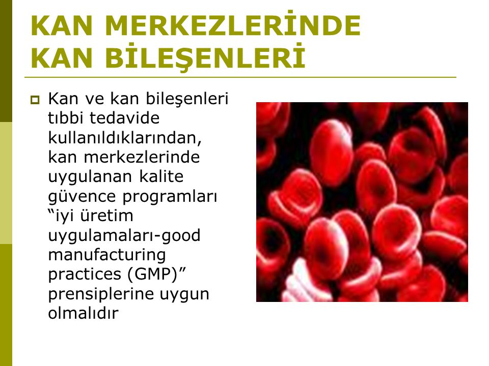 Kan alma işlemi için yazılı prosedür var mı? YanıtSayıYüzde Evet13780.1 Hayır3419.9 Toplam171100
