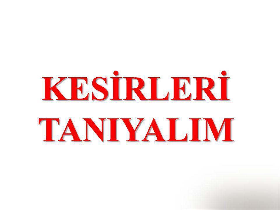 KESİRLERİ TANIYALIM
