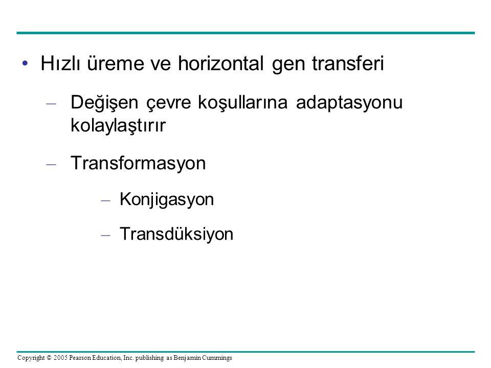 Copyright © 2005 Pearson Education, Inc. publishing as Benjamin Cummings •Hızlı üreme ve horizontal gen transferi – Değişen çevre koşullarına adaptasy