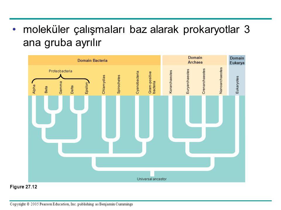 Copyright © 2005 Pearson Education, Inc. publishing as Benjamin Cummings •moleküler çalışmaları baz alarak prokaryotlar 3 ana gruba ayrılır Figure 27.