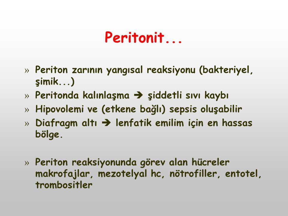 Peritonit... » Periton zarının yangısal reaksiyonu (bakteriyel, şimik...) » Peritonda kalınlaşma  şiddetli sıvı kaybı » Hipovolemi ve (etkene bağlı)
