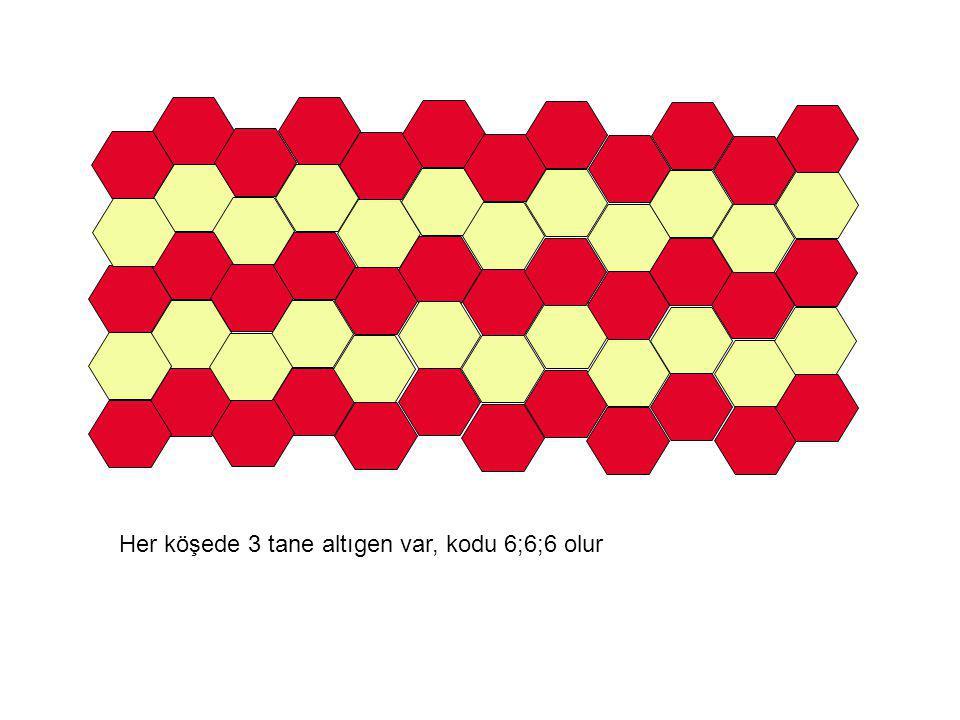 Her köşede 4 tane eşkenar dörtgen var, kodu 4;4;4;4 olur