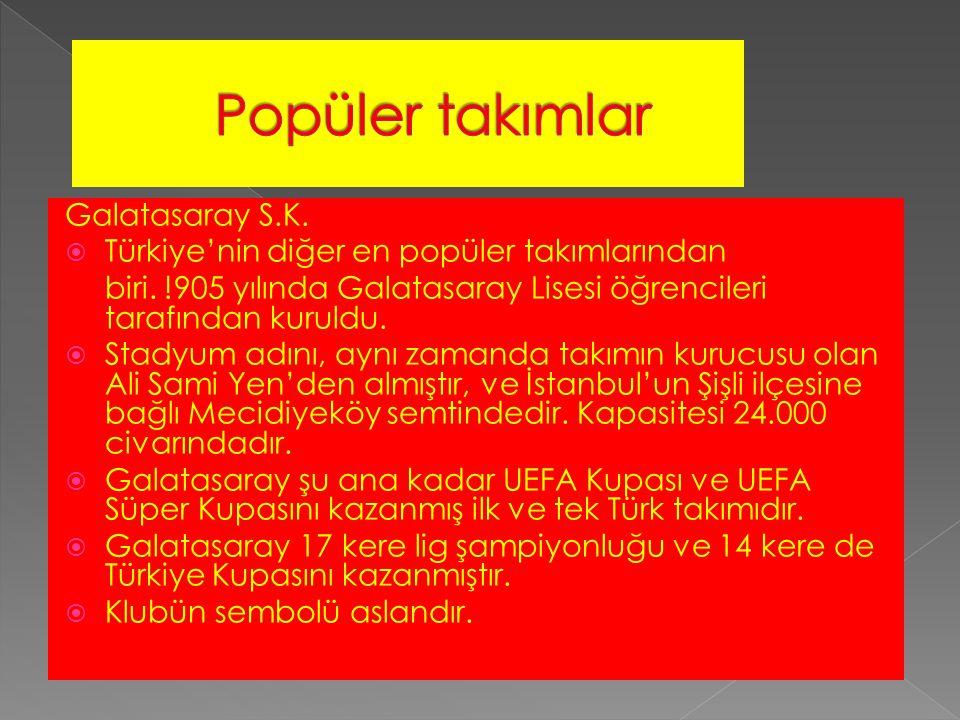 Galatasaray S.K.  Türkiye'nin diğer en popüler takımlarından biri.