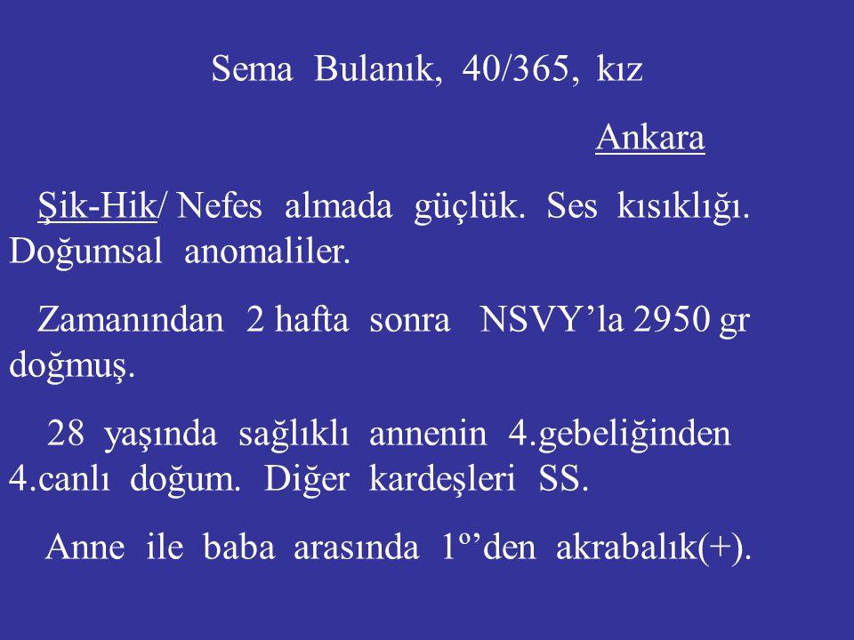 Sema Bulanık, 40/365, kız Ankara Şik-Hik/ Nefes almada güçlük. Ses kısıklığı. Doğumsal anomaliler. Zamanından 2 hafta sonra NSVY'la 2950 gr doğmuş. 28
