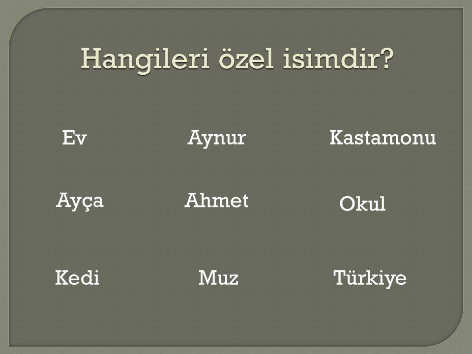 Hangileri özel isimdir? Ev Ayça Kedi Ahmet Muz Kastamonu Okul Türkiye Aynur