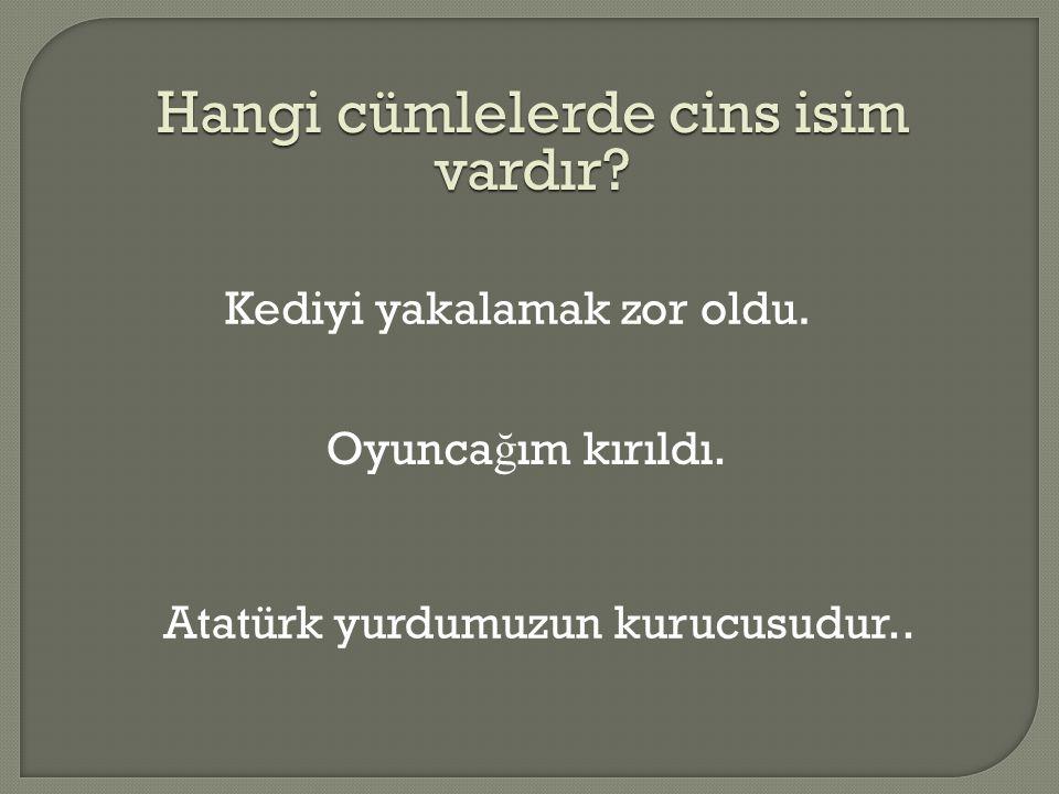 Hangi cümlelerde cins isim vardır? Kediyi yakalamak zor oldu. Oyunca ğ ım kırıldı. Atatürk yurdumuzun kurucusudur..