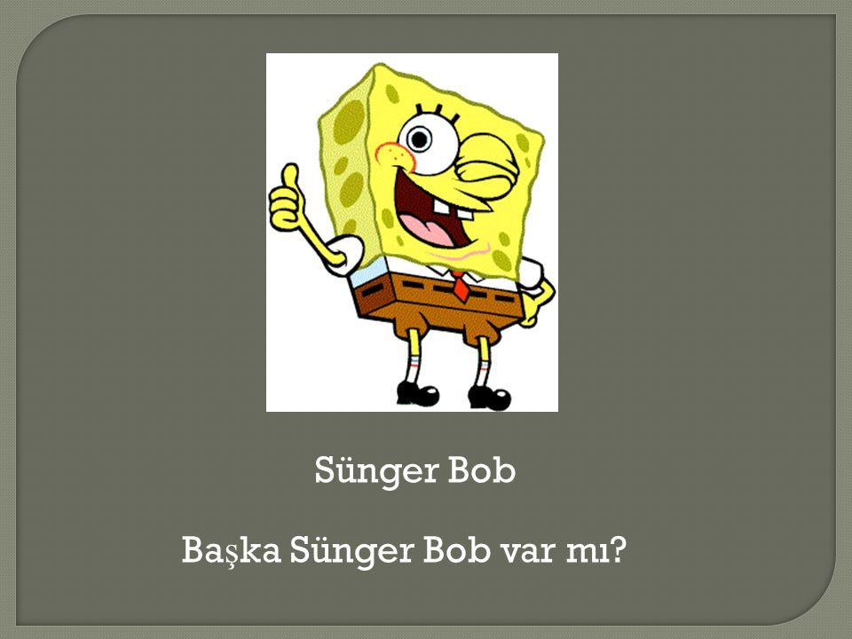 Sünger Bob Ba ş ka Sünger Bob var mı?