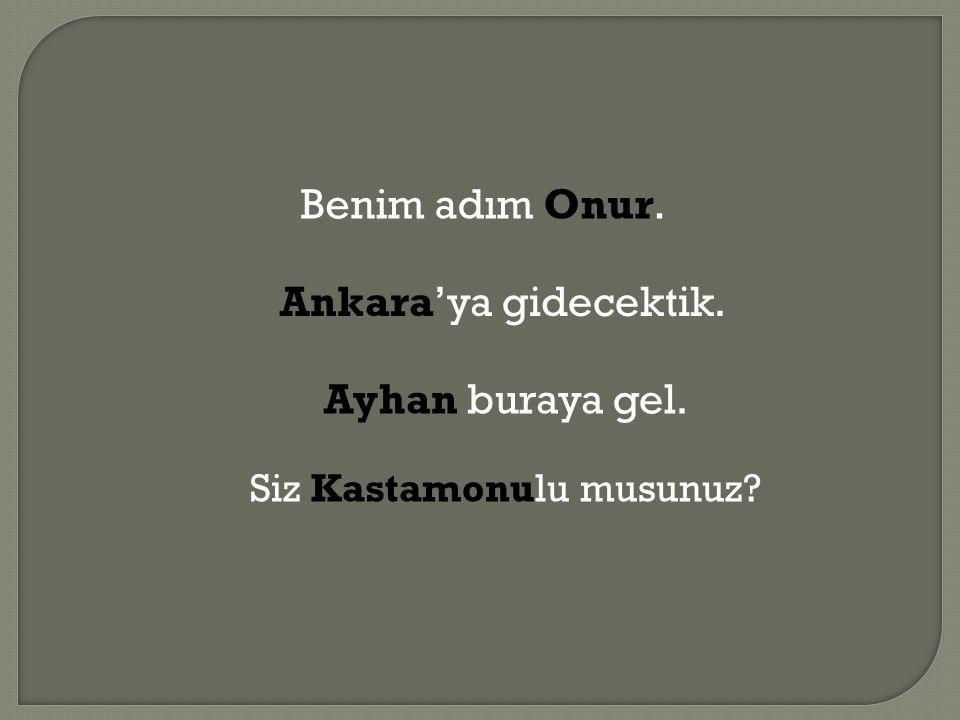 Benim adım Onur. Ankara'ya gidecektik. Ayhan buraya gel. Siz Kastamonulu musunuz?