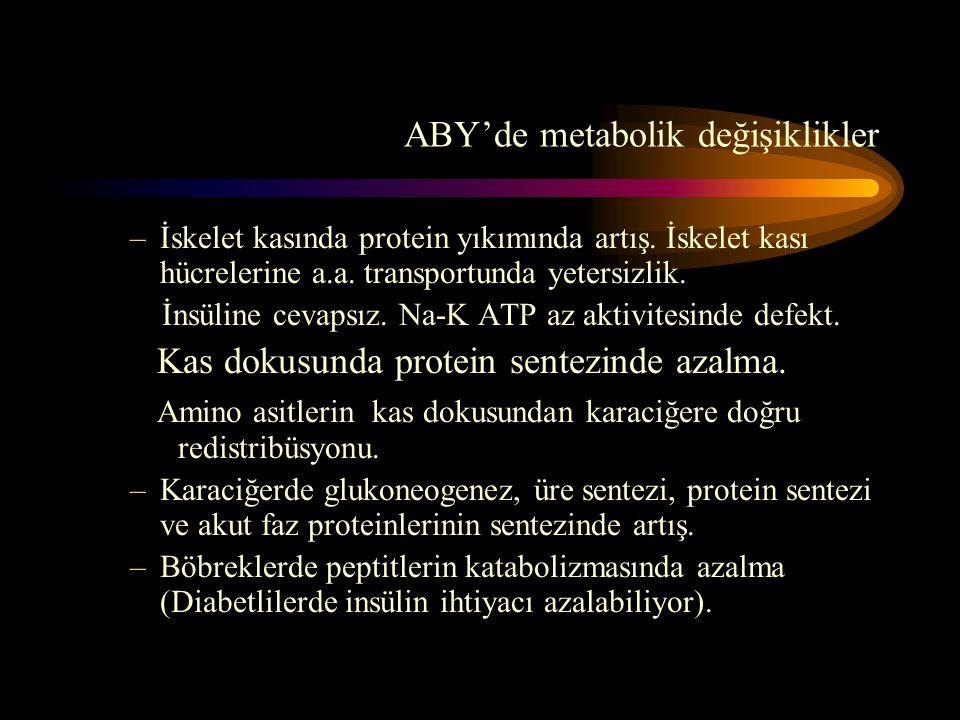 ABY'de metabolik değişiklikler –İskelet kasında protein yıkımında artış. İskelet kası hücrelerine a.a. transportunda yetersizlik. İnsüline cevapsız. N