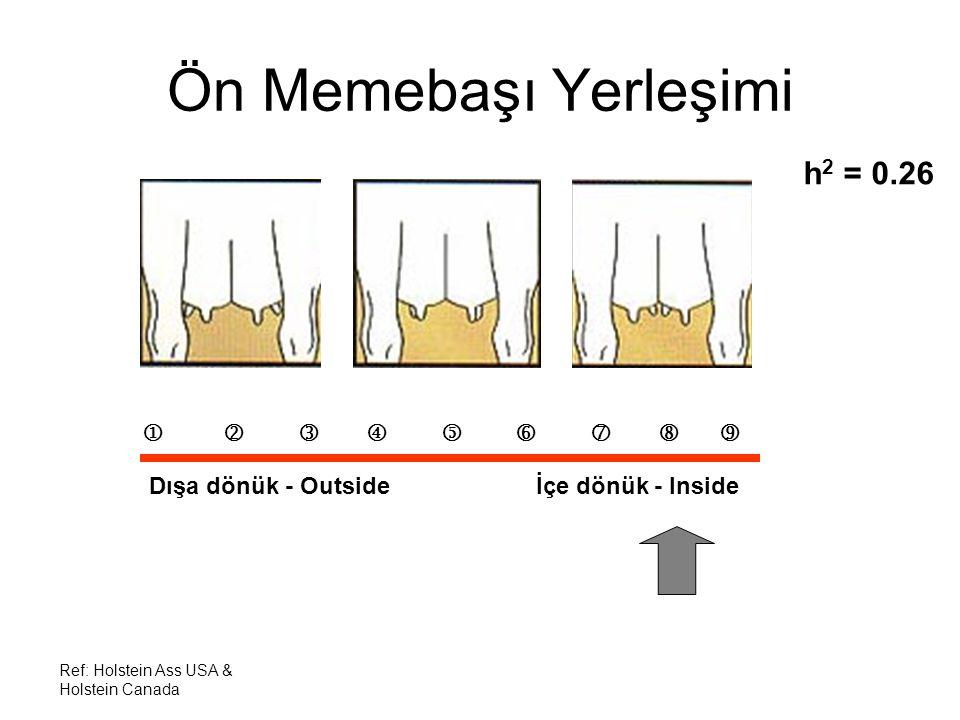 Ref: Holstein Ass USA & Holstein Canada Ön Memebaşı Yerleşimi h 2 = 0.26          Dışa dönük - Outside İçe dönük - Inside