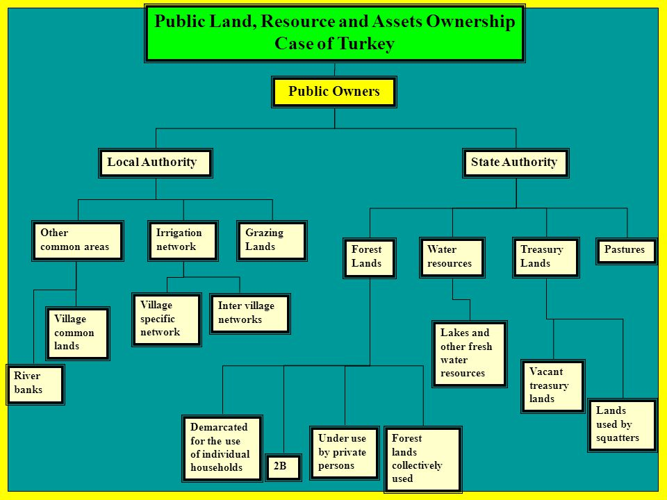 Public Land, Resource and Assets Ownership Case of Turkey Grazing Lands Other common areas Treasury Lands Forest Lands Pastures Public Owners Local Au
