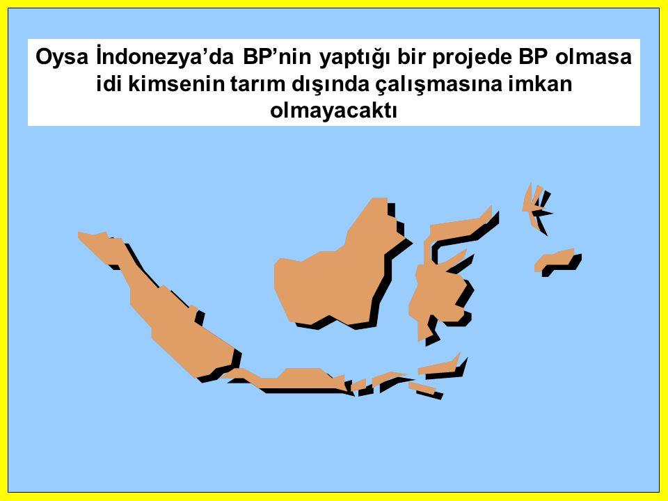 Oysa İndonezya'da BP'nin yaptığı bir projede BP olmasa idi kimsenin tarım dışında çalışmasına imkan olmayacaktı