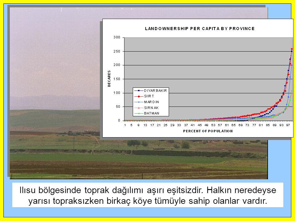 Ilısu bölgesinde toprak dağılımı aşırı eşitsizdir. Halkın neredeyse yarısı topraksızken birkaç köye tümüyle sahip olanlar vardır.