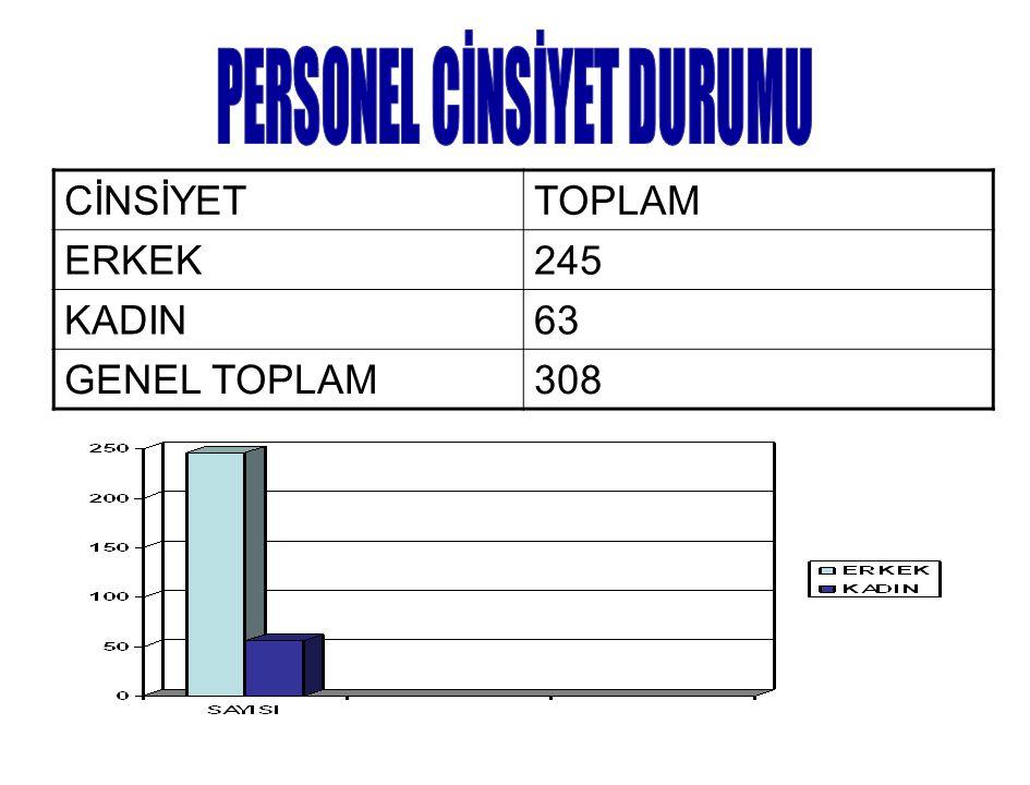 CİNSİYETTOPLAM ERKEK245 KADIN63 GENEL TOPLAM308