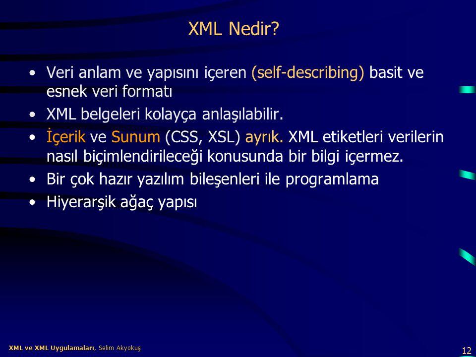 12 XML ve XML Uygulamaları, Selim Akyokuş XML ve XML Uygulamaları, Selim Akyokuş XML Nedir? •Veri anlam ve yapısını içeren (self-describing) basit ve
