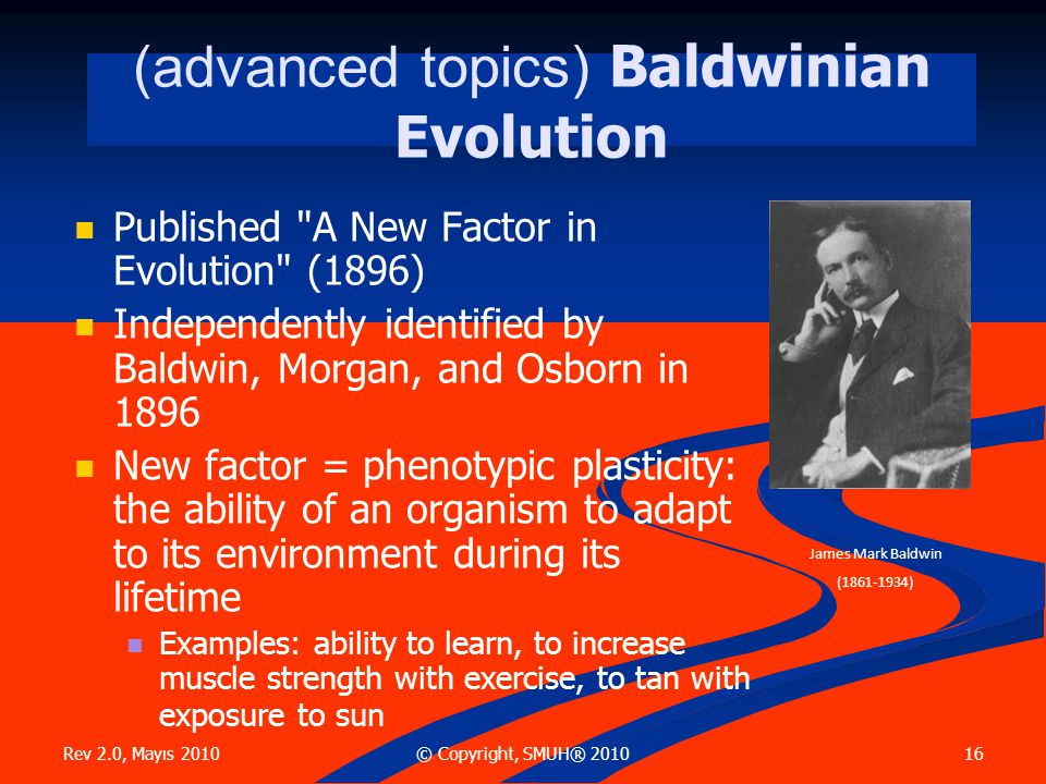 Rev 2.0, Mayıs 2010 16© Copyright, SMUH® 2010 (advanced topics) Baldwinian Evolution  Published