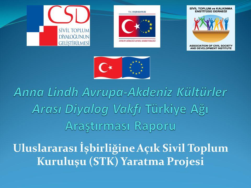 Uluslararası İşbirliğine Açık Sivil Toplum Kuruluşu (STK) Yaratma Projesi