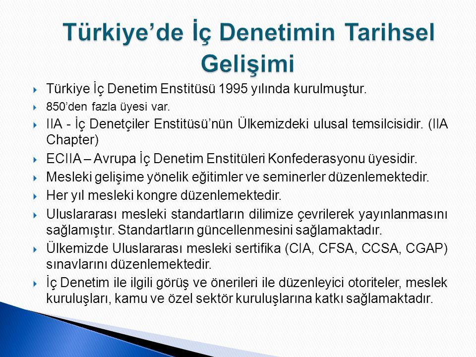  Türkiye İç Denetim Enstitüsü 1995 yılında kurulmuştur.  850'den fazla üyesi var.  IIA - İç Denetçiler Enstitüsü'nün Ülkemizdeki ulusal temsilcisid