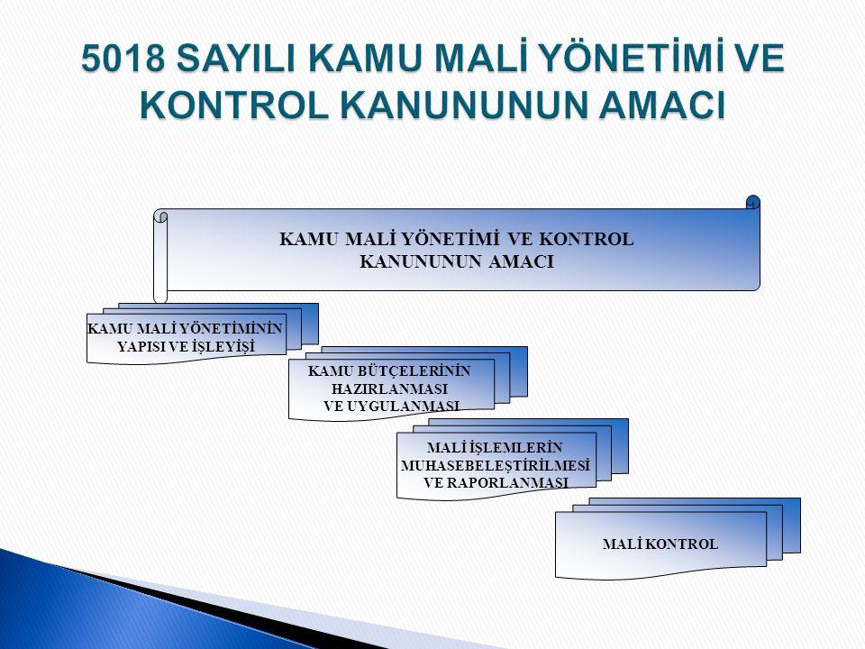  Türkiye İç Denetim Enstitüsü 1995 yılında kurulmuştur.