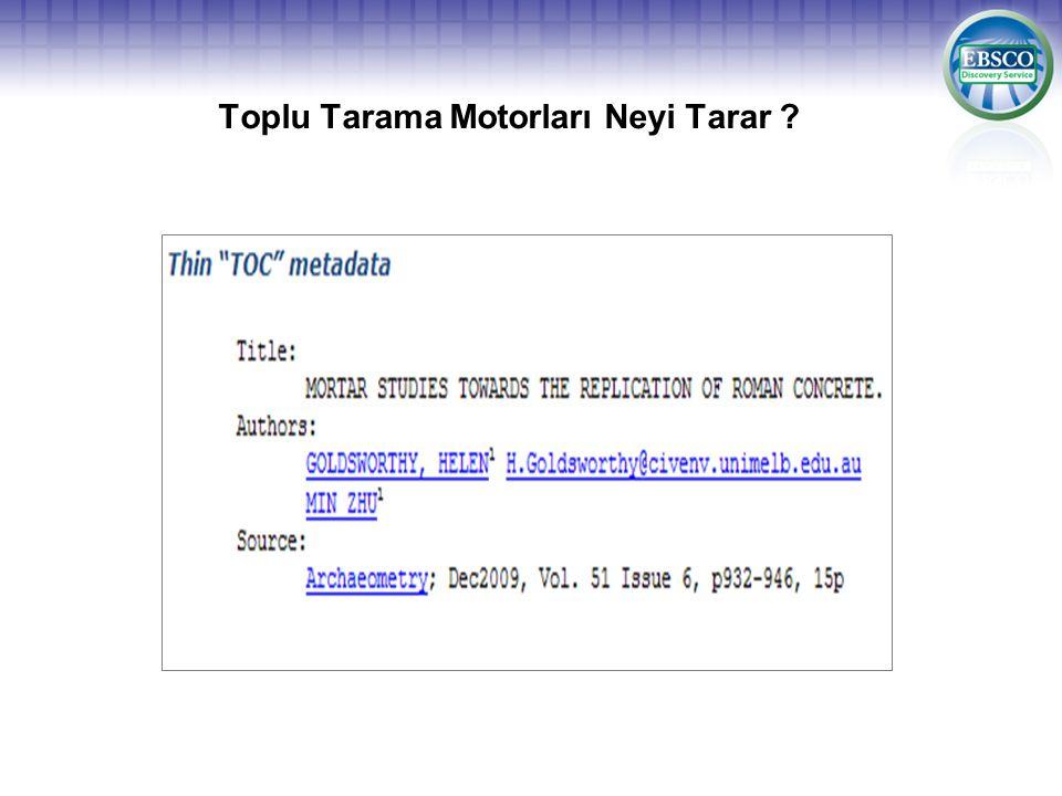 Toplu Tarama Motorları Neyi Tarar ?