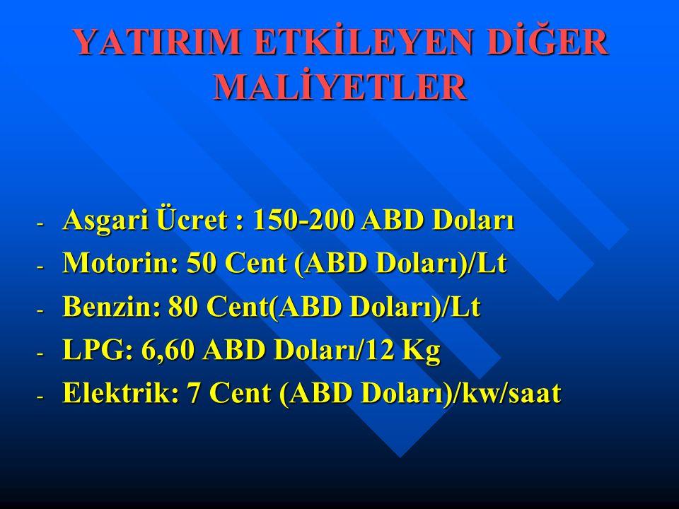 YATIRIM ETKİLEYEN DİĞER MALİYETLER - Asgari Ücret : 150-200 ABD Doları - Motorin: 50 Cent (ABD Doları)/Lt - Benzin: 80 Cent(ABD Doları)/Lt - LPG: 6,60 ABD Doları/12 Kg - Elektrik: 7 Cent (ABD Doları)/kw/saat