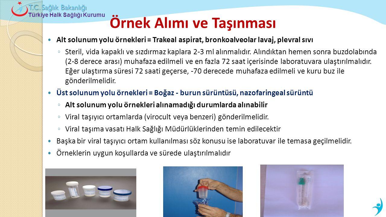 Türkiye Halk Sağlığı Kurumu T.C. Sa ğ lık Bakanlı ğ ı Örnek Alımı ve Taşınması  Alt solunum yolu örnekleri = Trakeal aspirat, bronkoalveolar lavaj, p