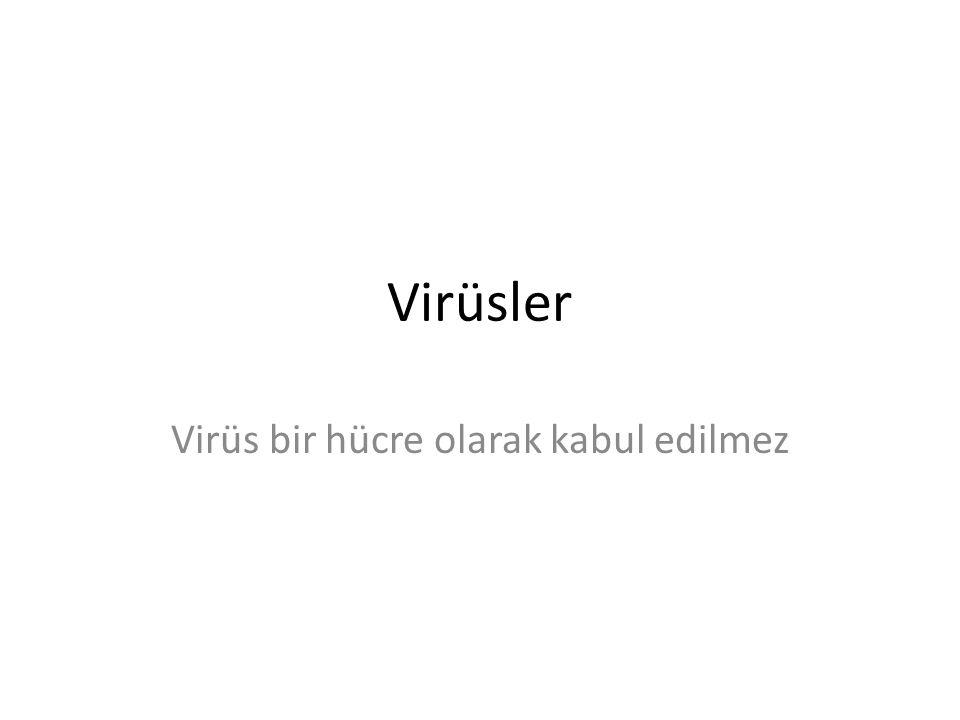 Virüsler Virüs bir hücre olarak kabul edilmez