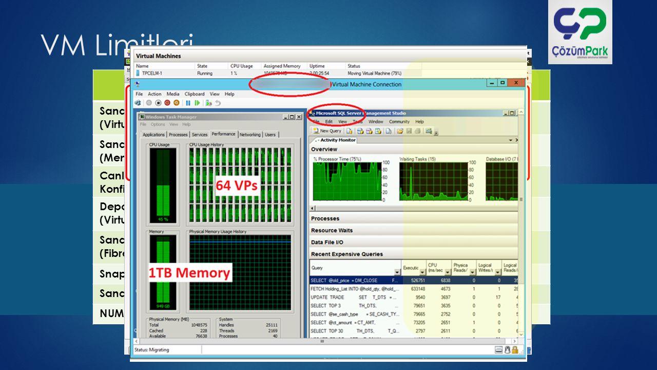 Failover Clustering  Cluster servisi host (fiziksel) içinde çalışır ve VM'leri korur.