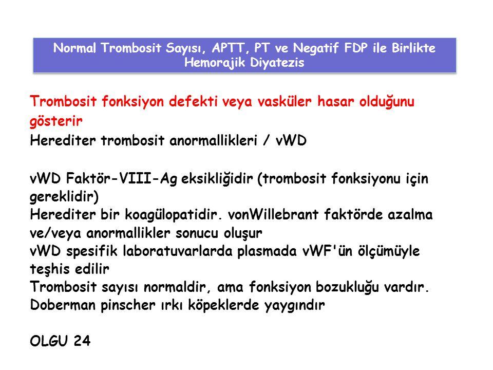 Trombosit fonksiyon defekti veya vasküler hasar olduğunu gösterir Herediter trombosit anormallikleri / vWD vWD Faktör-VIII-Ag eksikliğidir (trombosit