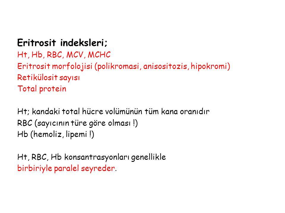 Eritrosit indeksleri; Ht, Hb, RBC, MCV, MCHC Eritrosit morfolojisi (polikromasi, anisositozis, hipokromi) Retikülosit sayısı Total protein Ht; kandaki