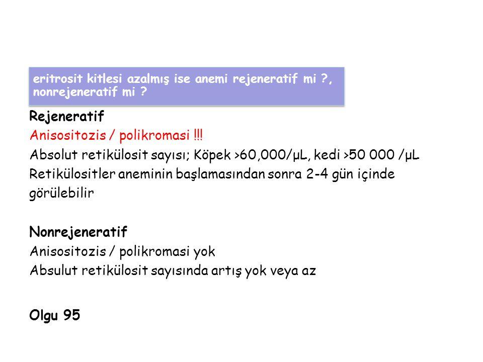 Rejeneratif Anisositozis / polikromasi !!.